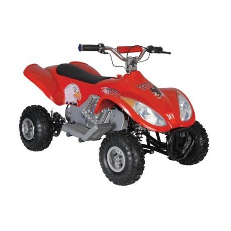 HUNTER ATV 24 VOLT 350 WATT