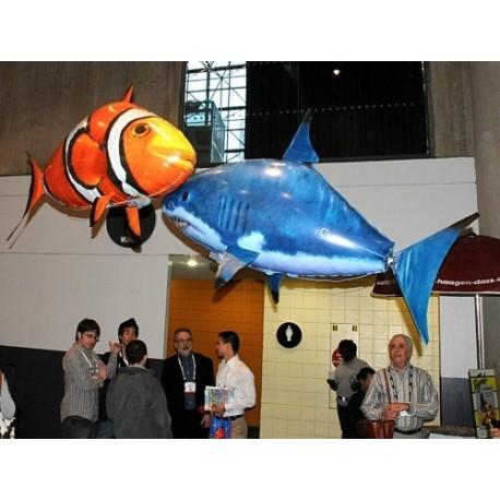 Air Swimmers (Uçan Balık Nemo)