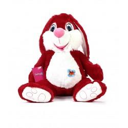 Neşeli Tavşan 52cm